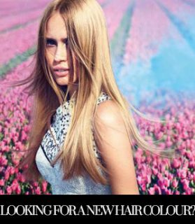 Looking for a new hair colour? We can help!