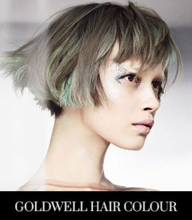 Goldwell Hair Colour Services